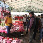 Extiende SEDARPA consumo solidario de nochebuena, miel y aguacate en Parque Doña Falla