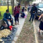 Productores de ajo venden su cosecha en la capital